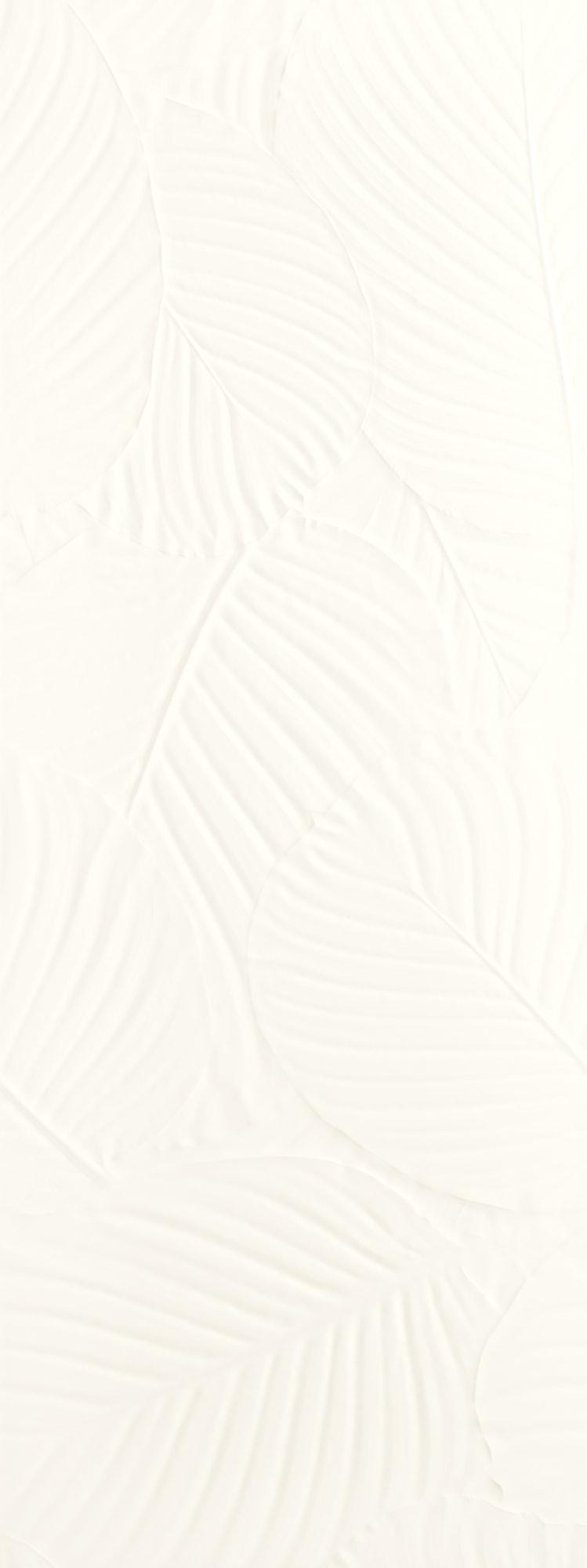 Genesis Palm White