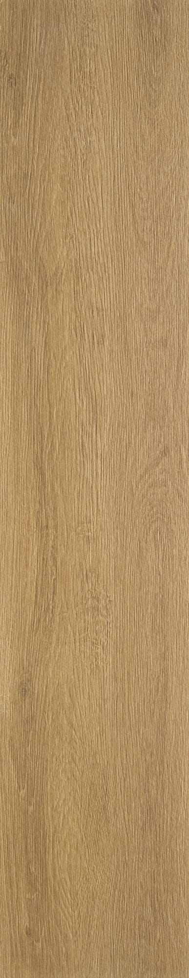 Timber Beige