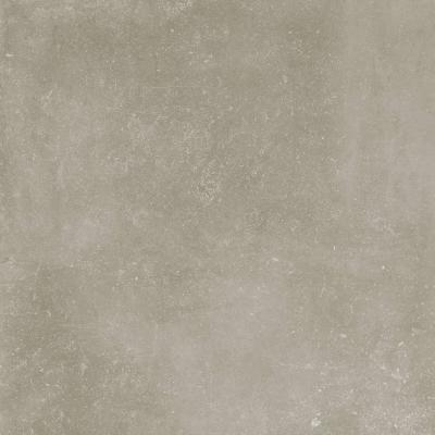 Arise Grey