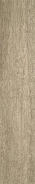 Timber Tortora